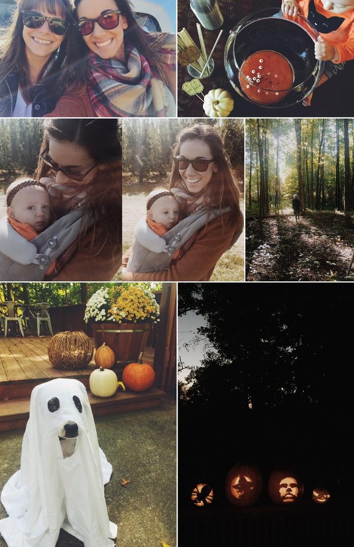 Pumpkins2016 5