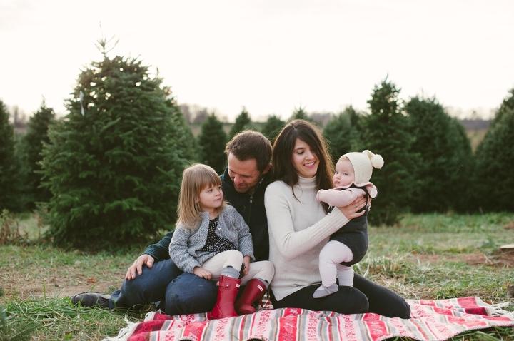TreeFarmBlog 1